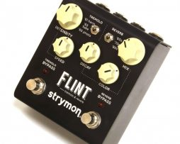 Strymon flint-1